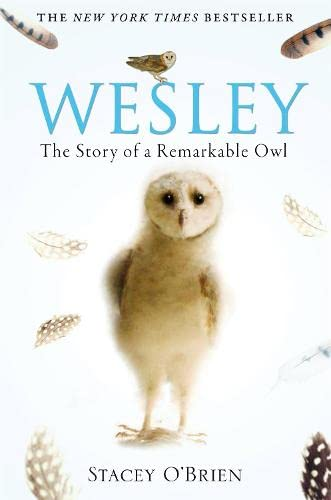 Wesley: The Story of a Remarkable Owl by Stacey O'Brien