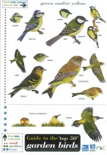 Guide to the Top 50 Garden Birds by Edward Jackson