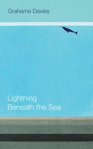 Lightning Beneath the Sea by Grahame Davies