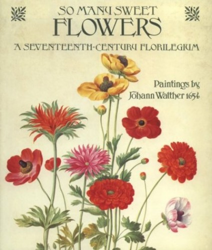 So Many Sweet Flowers: A Seventeenth-century Florilegium - Paintings by Johann Walther, 1654 by Johann Walther