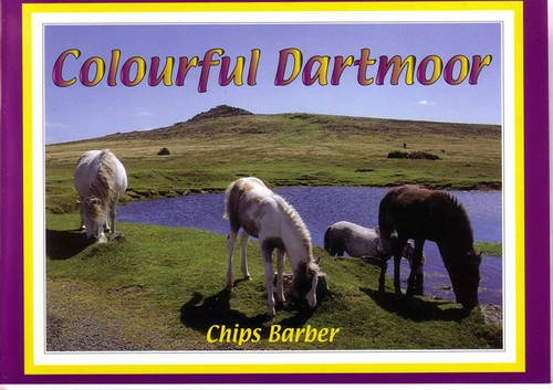 Colourful Dartmoor by Chips Barber