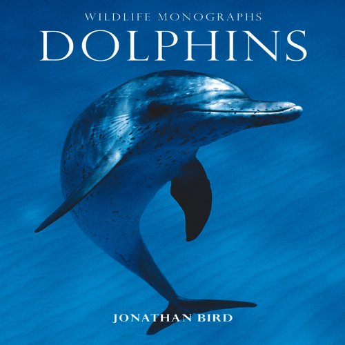 Dolphins by Jonathan Bird