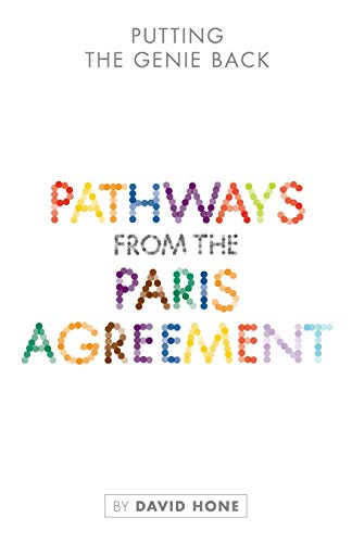 Putting the Genie Back: Pathways from the Paris Agreement by David Hone